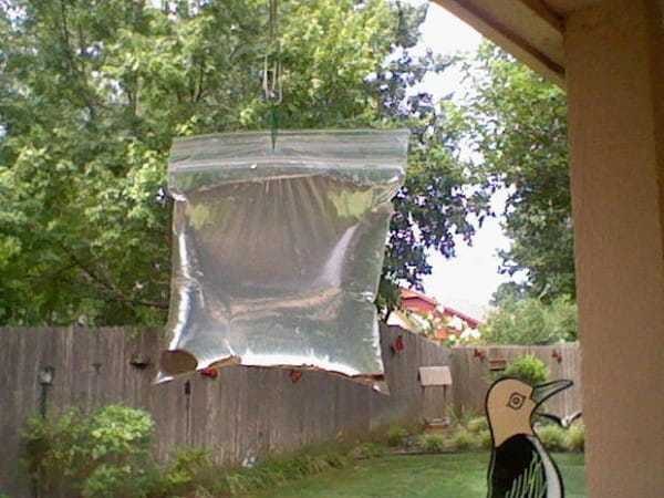 Это самый дешевый метод избавления от насекомых. Гениальное устройство от надоедливых мух